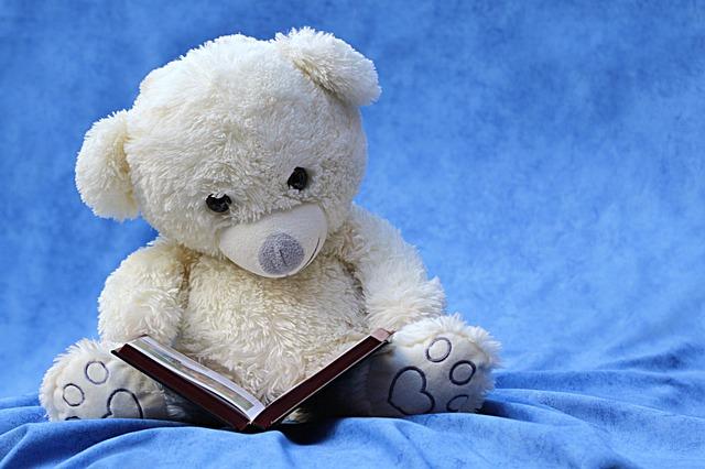 plyšák s knihou